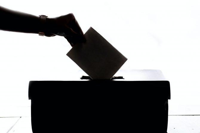 Boletín Informativo Elecciones 2